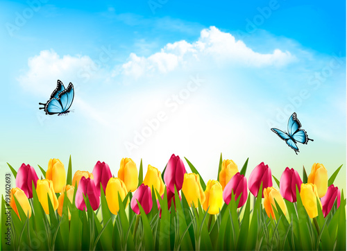 Foto op Plexiglas Tulp Nature background with green grass, flowers and a butterfly. Vector.
