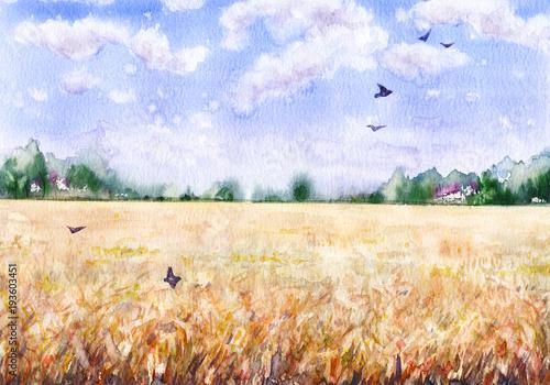 Akwarela krajobraz z pola pszenicy