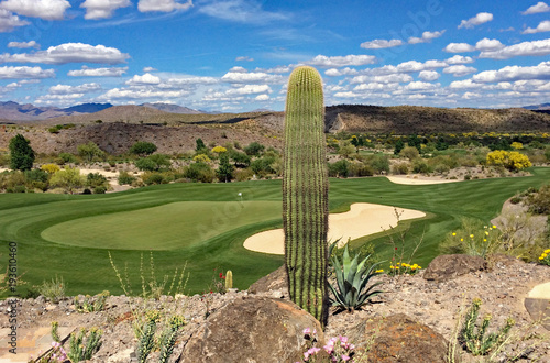 Valokuvatapetti Golf course with undulating greens surrounded by sand traps and cactus in Wicken