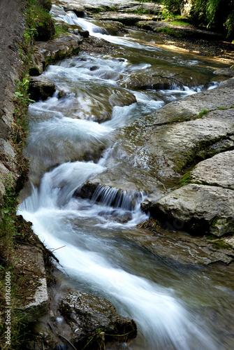 Fototapeten Forest river Mountain river stream