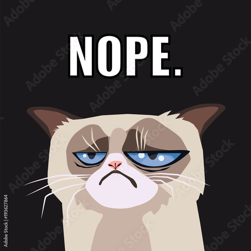 Grumpy Cat Vector