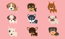 Vector Series About Cute Puppi...