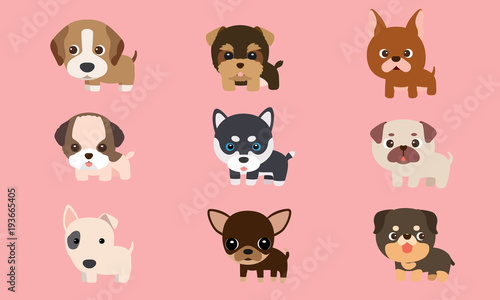 Tela Vector series about cute puppies poodles, Siberian Husky, bull terriers and other breeds