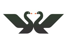 Two Black Swan Logo