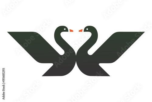 Obraz na płótnie two black swan logo