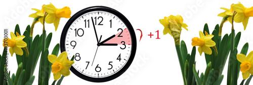 Garden Poster Iris Daylight Saving Time. Change clock to summer time.