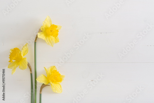 Deurstickers Narcis Narcissus on wooden table