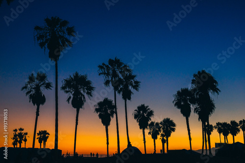View of silhouette palm trees against blue sky at sunset