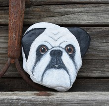 Pug Face Painted On Rock