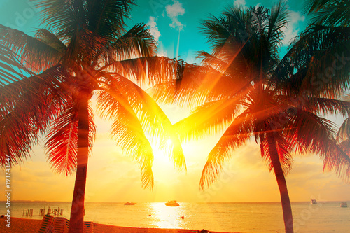 Deurstickers Palm boom Sunset beach with tropical palm tree over beautiful sky. Palms and beautiful sky background. Tourism, vacation concept backdrop. Palms silhouettes over orange sun