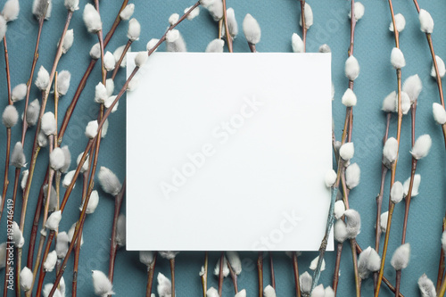 Spoed Foto op Canvas Lente Pussy willow branches and blank card.