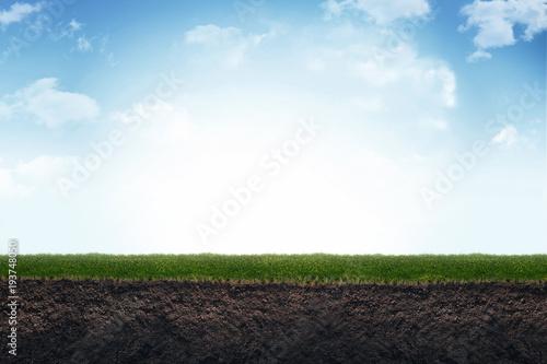 Fotografia Cute soil and grass in meadow. 3d illustration