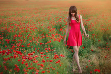 Beautiful Woman In A Red Dress In A Poppy Field At Sunset Walking Walks Forward, Warm Toning, Happiness And A Healthy Lifestyle