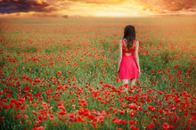 Beautiful Woman In A Red Dress In A Poppy Field At Sunset From The Back, Warm Toning, Happiness And A Healthy Lifestyle