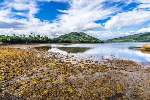 Loch Fyne shoreline seen from Inveraray, Argyll, Scotland, Britain Canvas Print