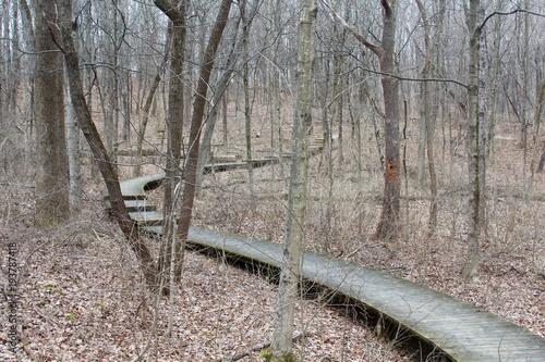 Zdjęcie XXL Kręta ścieżka boardwalk w lesie zimą.