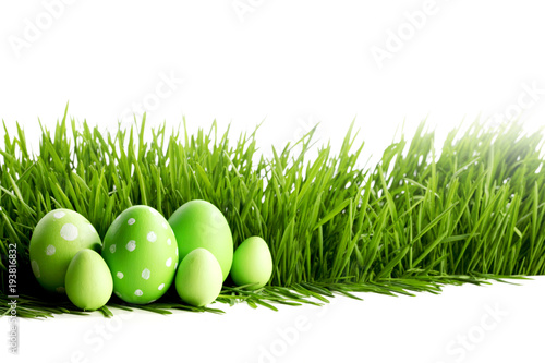 Photo Row of Easter Eggs in grass