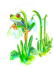 Watercolor Red-eyed Tree Frog And Crocuses, Spring Illustration