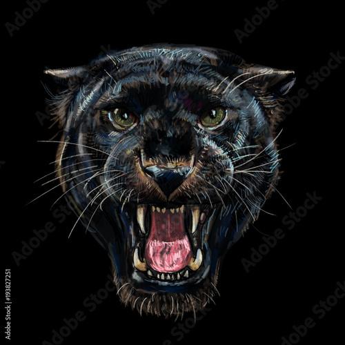 Cadres-photo bureau Croquis dessinés à la main des animaux Roaring black panther on black background