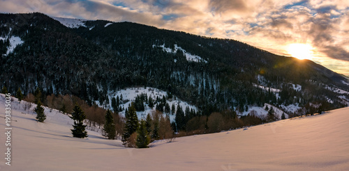 Foto op Aluminium Zalm winter panorama in mountains at sunrise. forested hills of mountain ridge and some trees on snowy slopes
