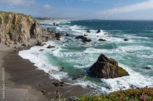 Foto op Aluminium Cathedral Cove The Rugged California Coastline