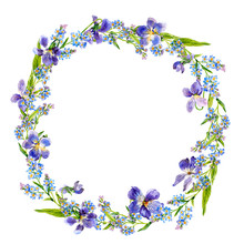 Wreath Of Forgot-me-nots And V...