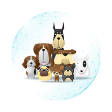 Pet Care Concept With Dogs Pro...