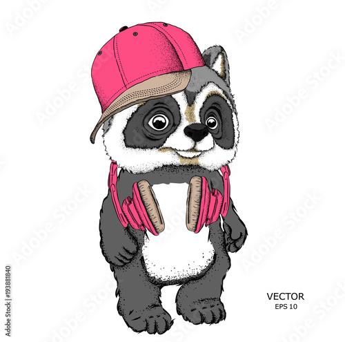 Fotobehang Art Studio Cartoon raccoon in hat drawing. A good character for children. Vector illustration