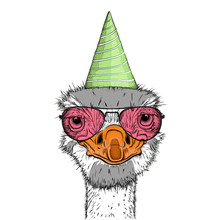 Hipster Ostrich In Happy Birth...