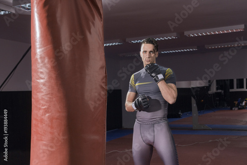 Fotografia, Obraz  one young boxer standing posing, looking at camera