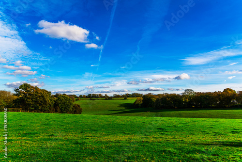 Deurstickers Groene English green meadow on a sunny day, a typical rural landscape of the British countryside