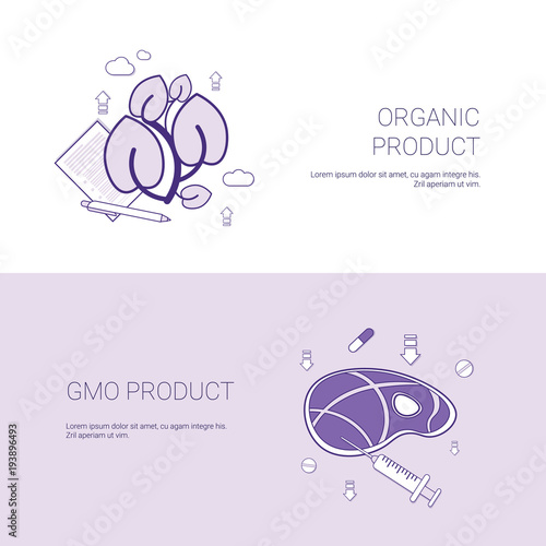 organic and gmo product concept template web banner with copy space vector  illustration