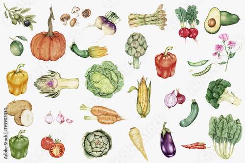 Fotografie, Obraz  illustration of Hand drawn vegetable collection
