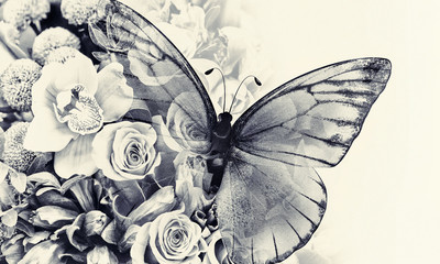 Fototapetabutterfly with flowers
