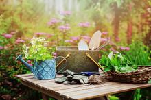 Garden Work Still Life In Summ...