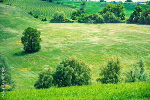 Montage in der Fensternische Pistazie Beautiful landscape, spring nature, sunny fields on rolling hills in Tuscany, Italy