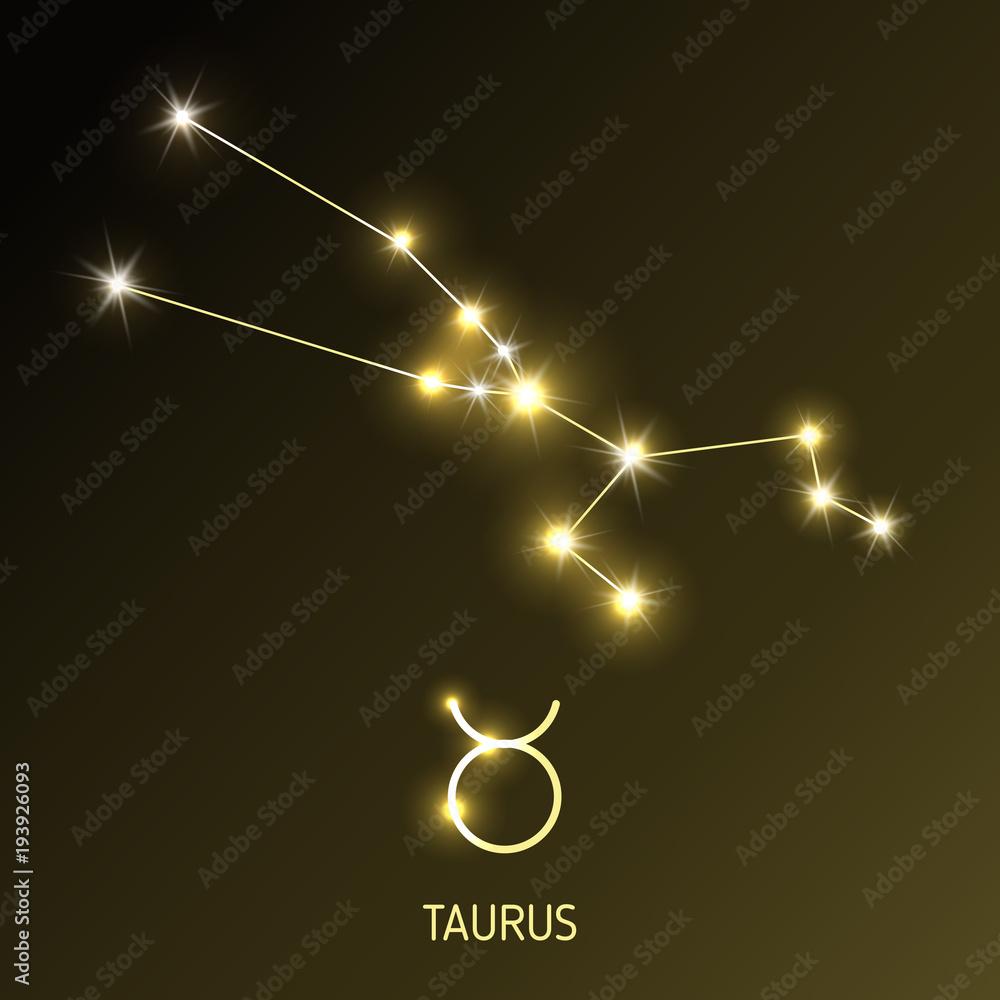 Fototapeta Set zodiac sign.
