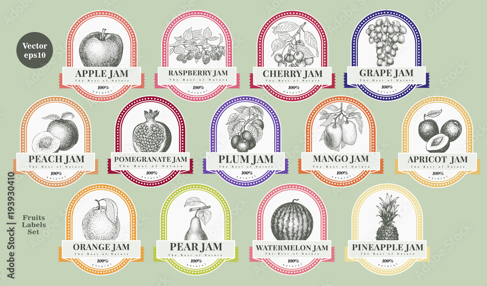 Fototapeta Berry and fruit labels set. Vintage style design template. Hand drawn vector illustrations.