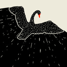 Background With Flying Black Swan. Hand Drawn Bird