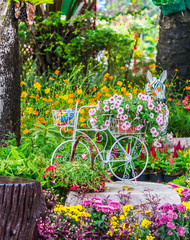 FototapetaIn cozy home garden on summer./ Vintage white bike and flowerpot in cozy home flowers garden on summer.