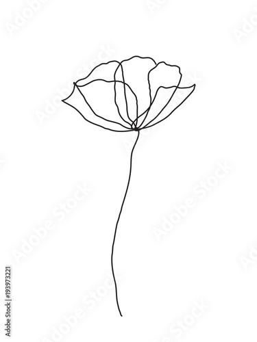 kontury-kwiatu-maku