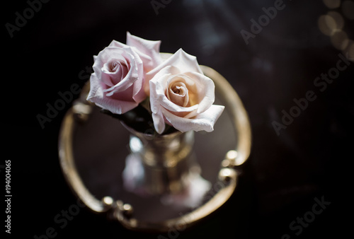 Close-up of roses in vase