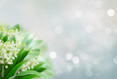 Lilly of valley Wallpaper Mural