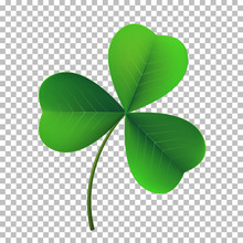Vector Three-leaf Shamrock Clover Icon. Lucky Fower-leafed Symbol Of Irish Beer Festival St Patrick's Day. 3d Realistic Vector Green Grass Clover Isolated On Transparent Background