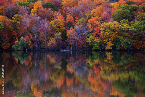 Photo Fall colors in Quebec, Canada