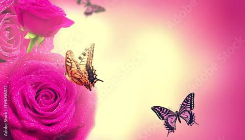 Deurstickers Roze Wunderschöne Schmetterlinge