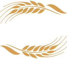 Gold Ripe Wheat Ears Frame, Border Or Corner Element.
