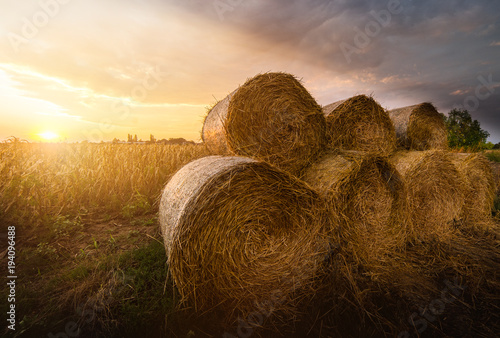 Hay roll bales on countryside fields Canvas Print