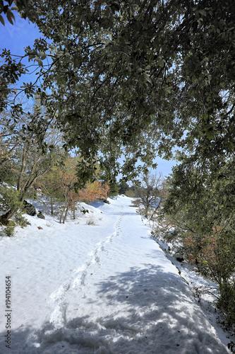 Fényképezés  Footprint On Snow In Etna Park, Sicily