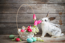 Rabbit With Easter Eggs On Wooden Background